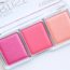 Blush Artist Shading Palette from CATRICE {REVIEW}